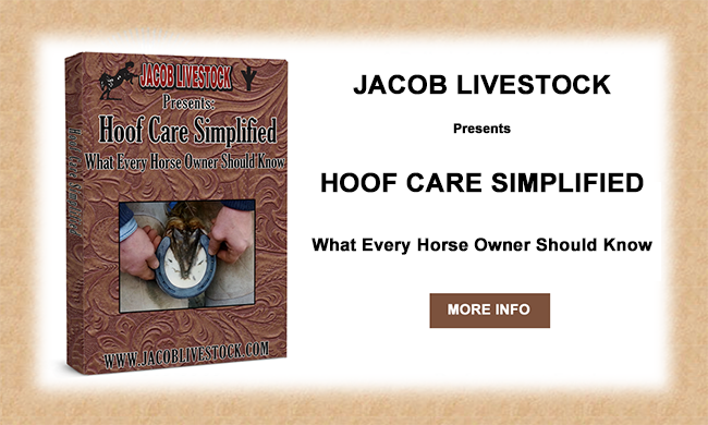 hoof_care_video